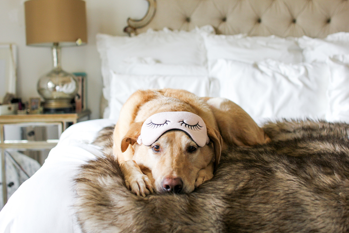 lab with eye mask on