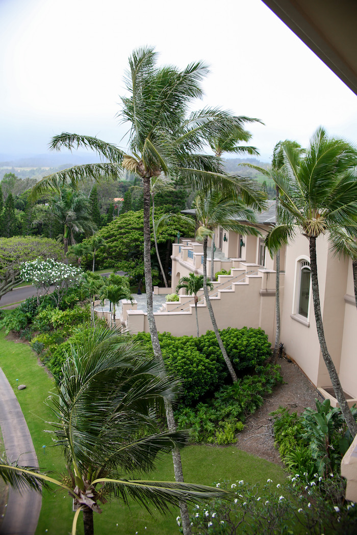 what to do in kapalua