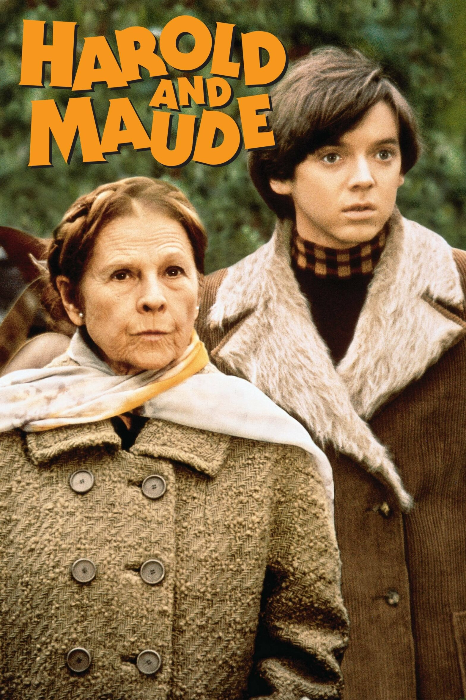 "Poster for the movie ""Harold and Maude"""