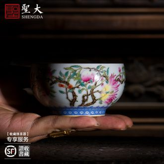 The big four supplies hand-painted ceramic colored enamel paint jin fu on the water jar in the sight of jingdezhen tea service parts