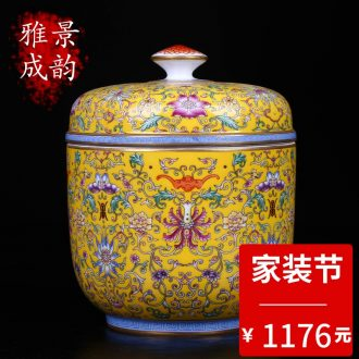 Jingdezhen ceramic tea POTS with a large seal pot household act the role ofing is tasted storage tank porcelain decoration