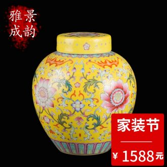 Jingdezhen ceramic manual tong qu caddy of new Chinese style household pu-erh tea seal save receives a large