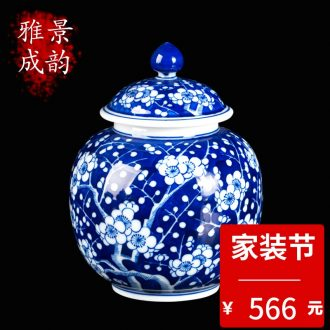 Jingdezhen ceramic dou colour every year more than maintain day word tea pot storage cans accessories teahouse furnishing articles