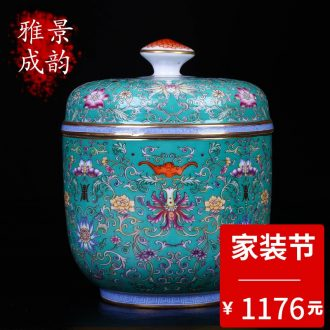 Jingdezhen ceramic new Chinese hand-painted tong qu ceramic tea pot puer tea POTS storage tank