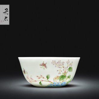 Jingdezhen ceramic porcelain enamel colour all hand sample tea cup kung fu tea cup ceramic cup personal Lord