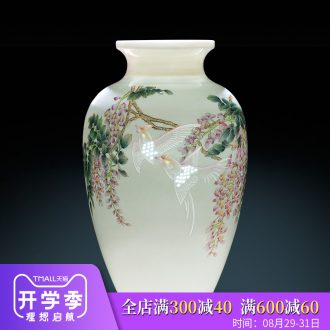Jingdezhen ceramics vase decoration home furnishing articles the sitting room porch decoration famous TV ark hand-painted pastel