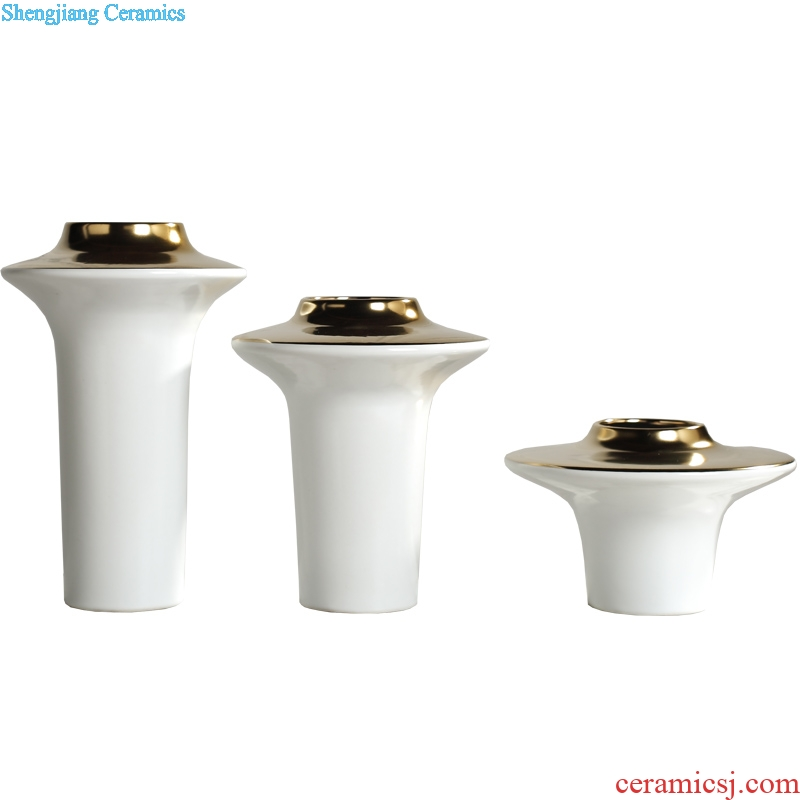 Creative contemporary and contracted light flower arranging exchanger with the ceramics vase luxury furnishing articles sitting room ark example room Nordic soft decoration