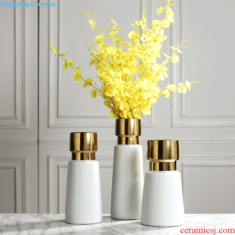 Contemporary and contracted light luxury furnishing articles creative living room TV cabinet ceramic vase of dry flower arranging Nordic flower flowers hydroponics