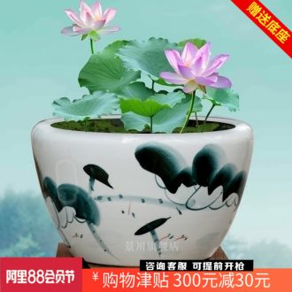 Hand-painted goldfish bowl of blue and white porcelain of jingdezhen ceramics tortoise cylinder lotus basin water lily courtyard sitting room adornment is placed