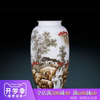 Jingdezhen ceramics hand-painted vases, flower arranging high furnishing articles classical Chinese style household decoration decoration large living room
