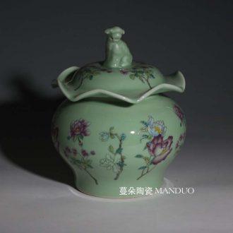 Jingdezhen lion a lotus leaf color porcelain pot storage elegant porcelain porcelain pot elegant decoration