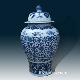 Jingdezhen blue and white porcelain jar of pure hand-painted hand-painted sweet wishes and grain general general display tank storage tank