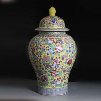 Jingdezhen general hand-painted flower porcelain jar flower flower general display porcelain ceramic xiantao pot