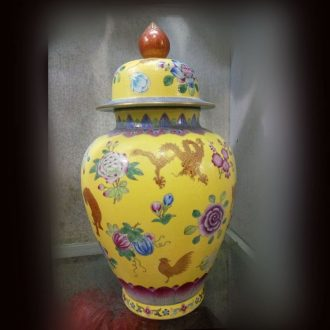 Jingdezhen Chinese zodiac general can spend life of ceramic bottle plum colored enamel porcelain jar may bottle