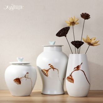 Modern Chinese vase continental Europe between example Jane in home furnishing articles storage tank ceramics handicraft ornament
