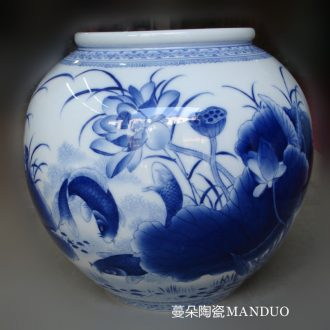 Jingdezhen porcelain lotus painting writing brush washer double-sided double-sided porcelain painting lantern fish writing brush washer display vase