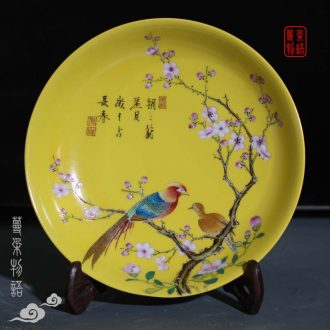 Jingdezhen in yellow flowers and birds yongzheng royal porcelain porcelain jingdezhen high imitation qing porcelain decoration butterfly plate