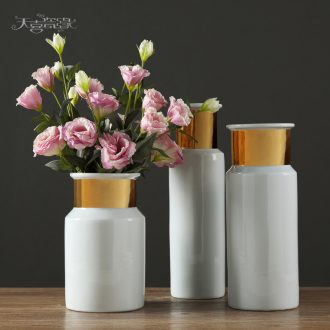 Jingdezhen European furnishing articles contracted ceramic creative living room table household adornment flowers planted porcelain vase