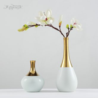 Modern Nordic ceramic vase TV ark place the sitting room porch table is pure and fresh and dry flower art flower arranging soft decoration