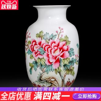 Master of jingdezhen ceramics hand-painted pastel vases, flower arranging flowers prosperous Chinese sitting room ark furnishing articles