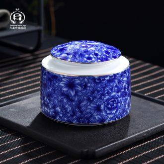 DH jingdezhen blue and white porcelain pot of green tea POTS ceramic seal tank medium puer tea pot of tea pot