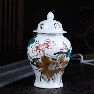 Jingdezhen ceramics hand-painted enamel tank storage tank general furnishing articles archaize sitting room porch home decoration