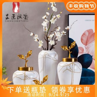 Jingdezhen new european-style decorative furnishing articles hotel example room living room TV cabinet mesa porch vases, flower decoration