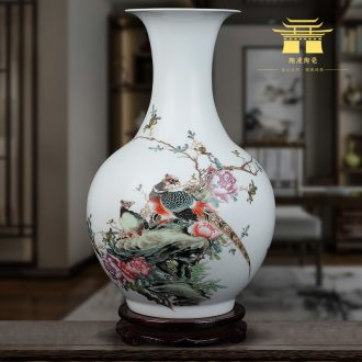 Jingdezhen ceramics vase furnishing articles pastel of the reward bottle arranging flowers sitting room TV ark of Chinese style household decorative arts and crafts