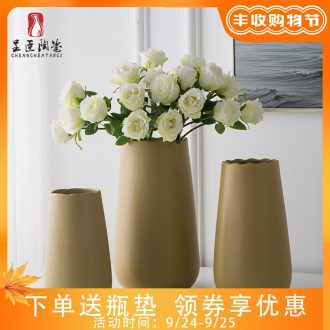 Jingdezhen porcelain vase furnishing articles ceramic bottle arranging flowers sitting room office table northern wind artistic decorative vase