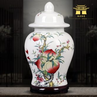 Jingdezhen ceramics green tea, black tea caddy sealed tank storage tanks puer tea pot home furnishing articles