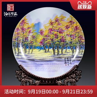 Jingdezhen ceramics of new Chinese style household wine sitting room decorate new home furnishing articles plate moved into small ornament
