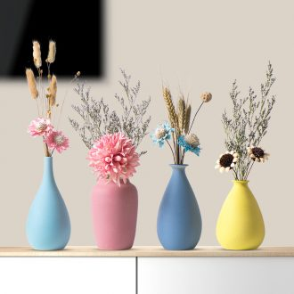 Nordic floret bottle decoration furnishing articles dried flower flower arranging ceramic table sitting room TV ark contracted creative home furnishings