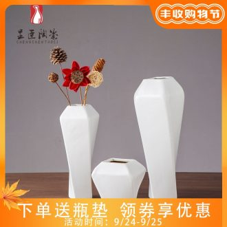 Jingdezhen contracted ceramic vases, black flower arranging furnishing articles of contemporary sitting room zen white decorative dried flower vase