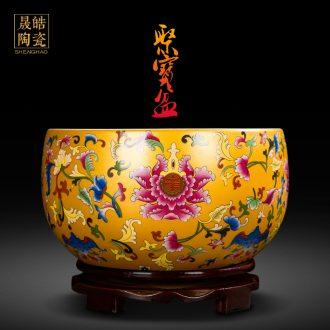 Jingdezhen ceramics cornucopia sitting room porch feng shui opening gifts decorative furnishing articles furnishing articles a thriving business a basin