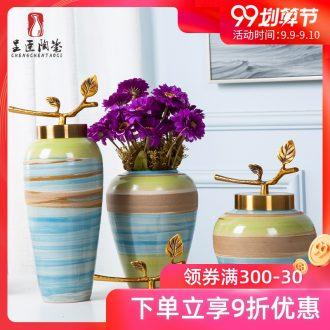 Jingdezhen porcelain furnishing articles sitting room tea table wine table decoration bottles character art vase color ceramic package