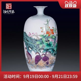 Jingdezhen ceramics hand-painted enamel vase furnishing articles flower arranging large sitting room be born home collection adornment