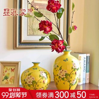 Murphy's new Chinese style manual ceramic vase American country living room TV cabinet wine cabinet decoration hydroponic flower arranging furnishing articles