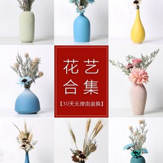 Floret bottle furnishing articles dried flower arranging flowers sitting room TV ark contracted modern home decoration decoration ceramics northern Europe