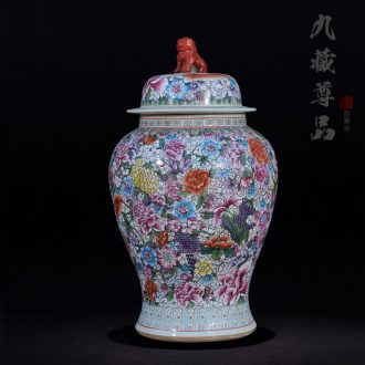 Jingdezhen ceramics modern antique hand-painted famille rose flower is a lion the general pot of marriage room handicraft furnishing articles