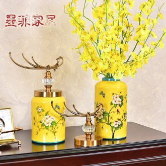Murphy American light luxury ceramic vase receive a TV ark place new Chinese style the sitting room porch receive jar flower arrangement