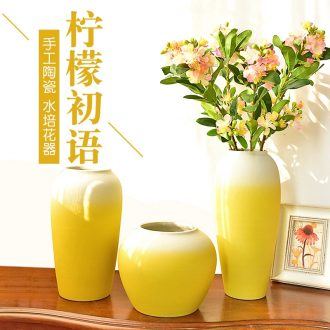 Murphy's new Chinese style ceramic vase simulation flower art hydroponic flower arranging, contemporary sitting room porch TV decorative furnishing articles