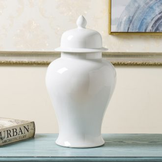 General jingdezhen ceramic pot vase furnishing articles white large sitting room dry flower, flower POTS of new Chinese style decoration