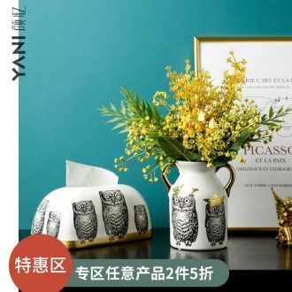 Nordic ins modern ceramic creative model vases, flower arranging is among the sitting room adornment is placed an owl
