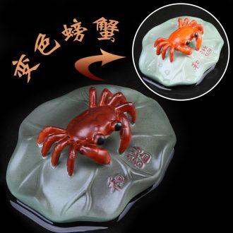 Furnishing articles pet boutique auspicious industry purple color tea to raise crabs mussels animal zen creative ceramics