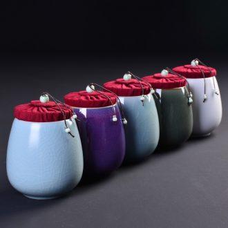 Brother officer RuDing seal tea boxes masterpieces travel warehouse storage tank pu 'er tea pot receives packing ceramic tea pot