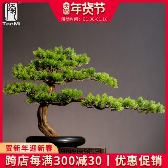 Tao fan home guest - the greeting pine furnishing articles sitting room porch simulation ceramics miniascape of new Chinese style household soft outfit green plant adornment