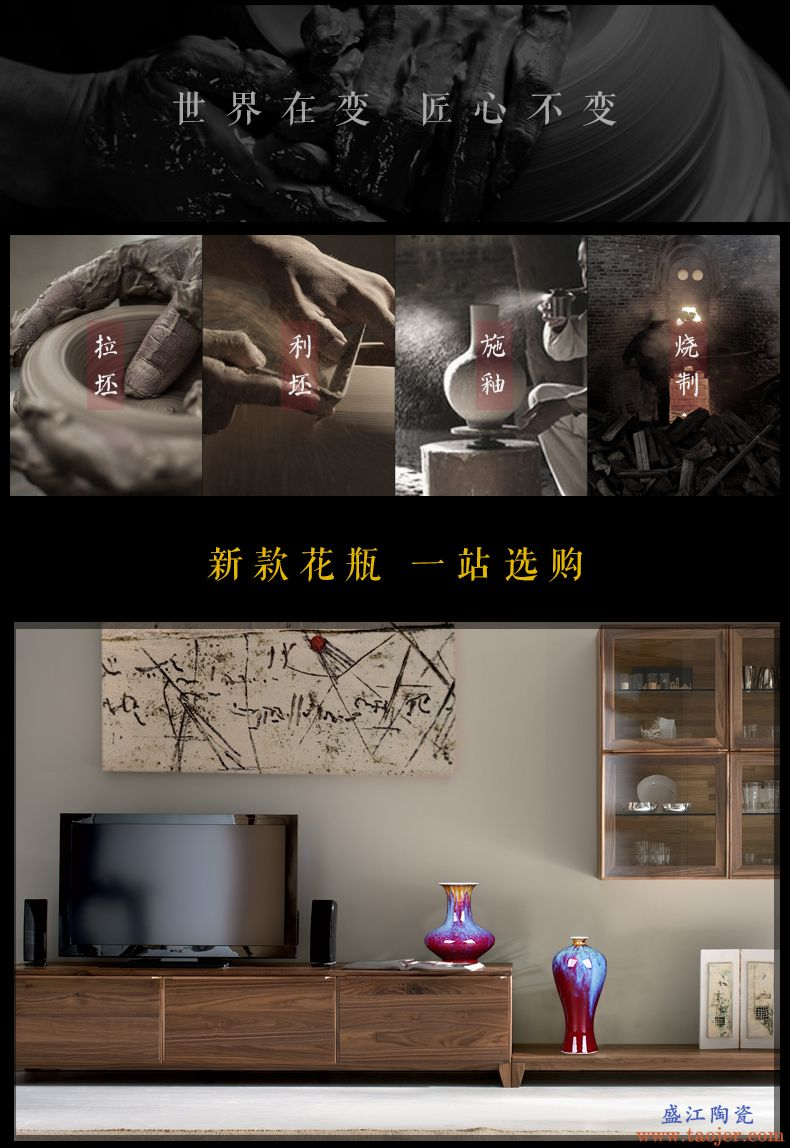 景德镇陶瓷器花瓶摆件瓷器新中式郎红客厅摆件玄关摆设居家装饰品