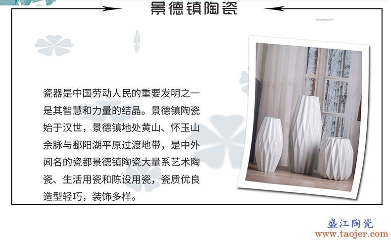 景德镇白色瓷花瓶客厅家居装饰北欧风格陶瓷ins花瓶摆件艺术瓷器