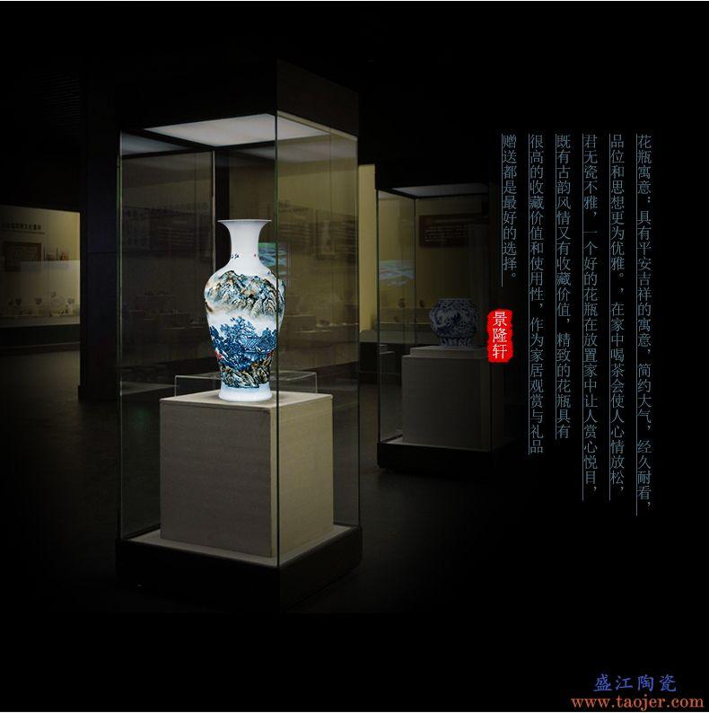 景德镇陶瓷器手绘花瓶插花器酒柜玄关家居装饰品客厅电视柜摆件-570776555868