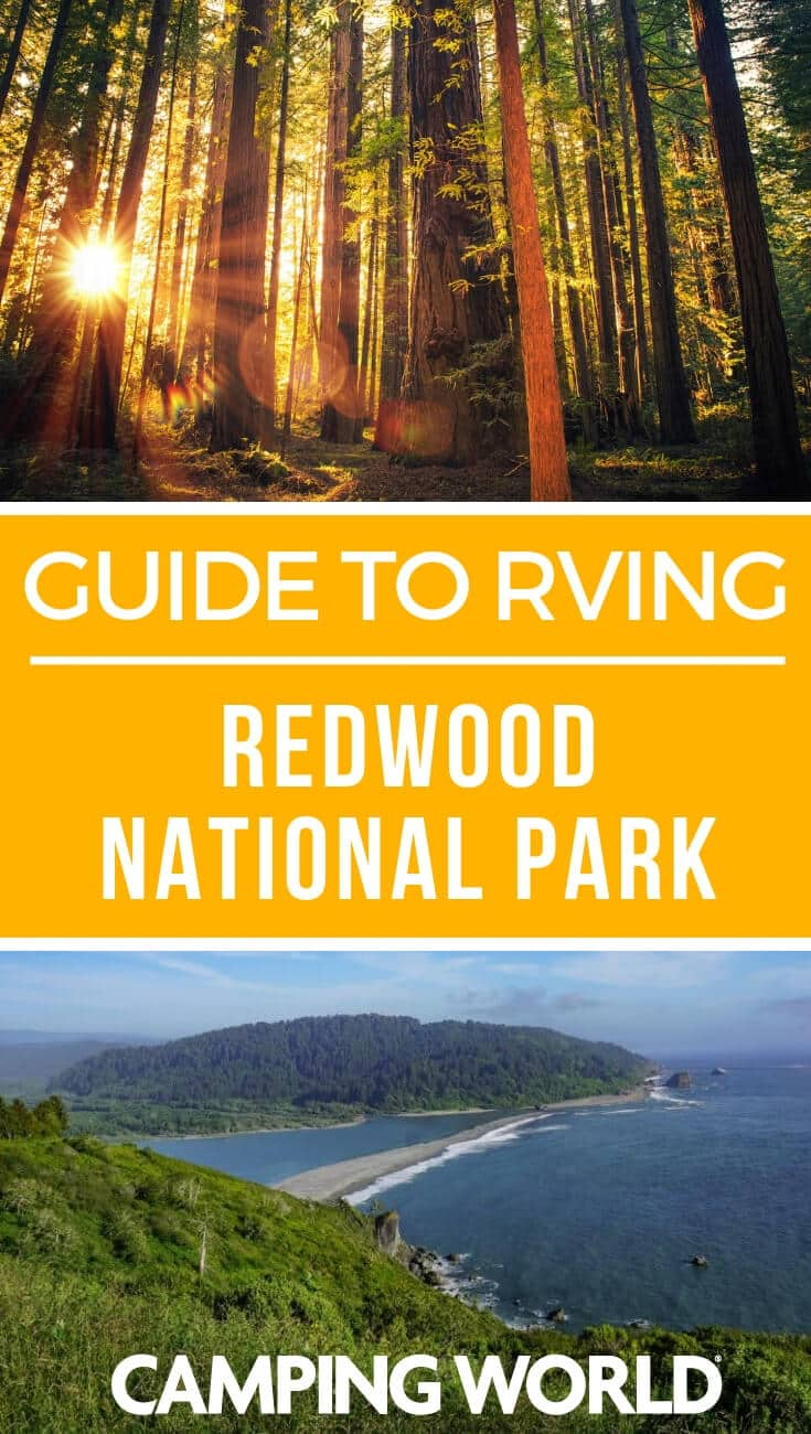 Camping World's guide to RVing Redwood National Park